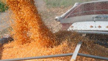 Prevén que se implementen gravámenes diferenciales para el agro